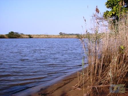 uMlalazi River